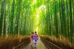 Бамбуковый лес Arashiyama около Киото, Японии Стоковая Фотография RF