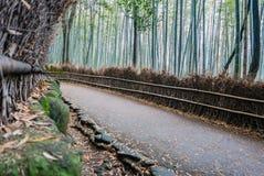 Бамбуковый лес Arashiyama Стоковые Изображения
