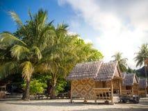 Бамбуковый курорт бунгала с предпосылкой кокосовой пальмы в острове Стоковое фото RF