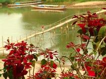 Бамбуковый мост в Luang Prabang Стоковое Изображение