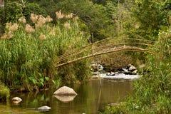 бамбуковый мост Лаос Стоковые Изображения RF