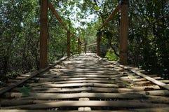 Бамбуковый мост от леса Pemuteran Бали мангровы Стоковое Изображение RF