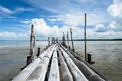 Бамбуковый мост Стоковая Фотография RF