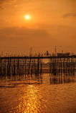 Бамбуковый мост Стоковое Изображение RF