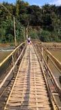 Бамбуковый мост стоковое изображение