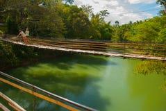 Бамбуковый мост - Bohol - Филиппины стоковое изображение rf