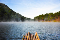 Бамбуковый сплоток Стоковое Изображение