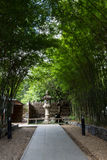 Бамбуковый тоннель Стоковое Изображение