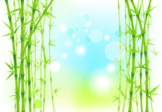 Бамбуковый фон природы Бесплатная Иллюстрация