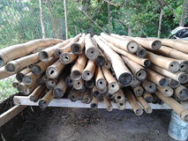 Бамбук будучи обрабатыванным для строительной конструкции стоковое фото rf