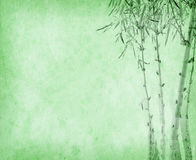Бамбук на старой текстуре бумаги grunge Стоковая Фотография