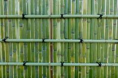 Бамбук обнести улица, токио, Япония Стоковое Фото