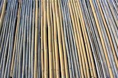 Бамбук, текстура Стоковая Фотография RF