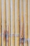 Бамбук текстуры Стоковые Фото