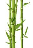 бамбук Стоковая Фотография RF