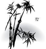 бамбук Стоковое фото RF