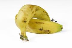 2 банана на белизне Стоковые Фотографии RF