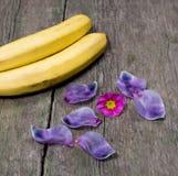 2 банана украшенного с фиолетовыми лепестками Стоковое Фото
