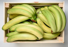 Бананы в деревянной коробке стоковые фото