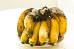 бананы зрелые Стоковое Изображение
