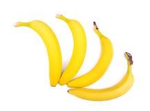Бананы конца-вверх изолированные над белой предпосылкой Аппетитные тропические плодоовощи 4 ярких желтых банана Вегетарианский об Стоковые Фото