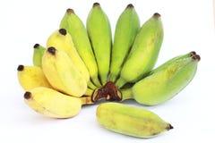 Бананы которые идут быть сваренным зеленоватый желтый цвет на whi Стоковое фото RF