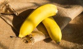 Бананы кудели Стоковые Фотографии RF