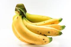 Бананы на белой предпосылке Стоковая Фотография