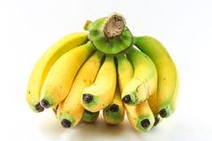 Бананы на белой предпосылке Стоковые Изображения
