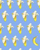 Бананы на голубой предпосылке картина безшовная изображение иллюстрации летания клюва декоративное своя бумажная акварель ласточк Стоковые Изображения RF