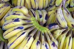 Бананы на фруктовой лавке Стоковое Изображение RF