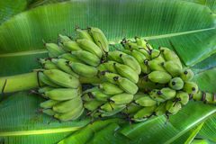 Бананы образовывают положение на поле стоковые изображения