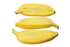 Бананы сахара Стоковые Изображения