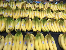 Бананы стоковые изображения rf