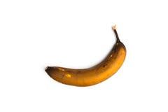 Банан Брайна на белой предпосылке Стоковые Фотографии RF