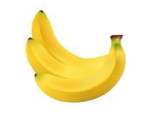 Банан вектора на изолированной предпосылке Стоковая Фотография