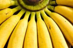 банан предпосылки Стоковые Фото