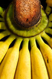 банан предпосылки Стоковое Изображение RF