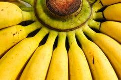 банан предпосылки Стоковая Фотография RF