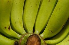 банан предпосылки Стоковое фото RF