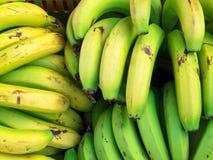 банан предпосылки Стоковое Фото