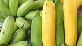 Банан предпосылки Cavendish и Pisang Awak имеет космос экземпляра Стоковые Изображения RF