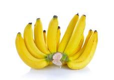 банан предпосылки закрепляя легкий архив включает путь зрелый к белой работе Стоковое Изображение RF