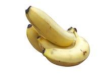 Банан приносить изолированным пуком Стоковое Изображение