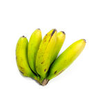 банан сырцовый Стоковая Фотография