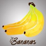 Банан с выплеском акварели Бесплатная Иллюстрация