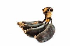 банан тухлый Стоковые Фото
