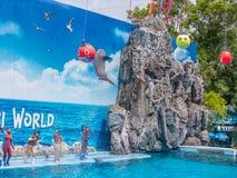 БАНГКОК, ТАИЛАНД - 16,2018 -ГО ИЮНЬ: Выставка дельфинов на мире сафари Самая умная выставка искусства и фокусов Мир сафари b Стоковое Фото