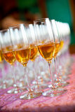 Банкет и Wedding стекла Шампани Стоковые Фотографии RF