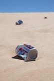 Банки пива в пустыне Стоковые Изображения RF